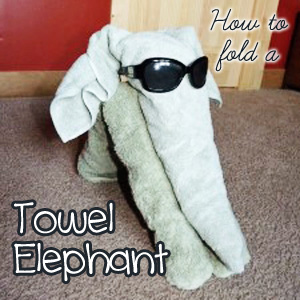 How to Fold a Towel Animal Elephant: Step-by-step instructions