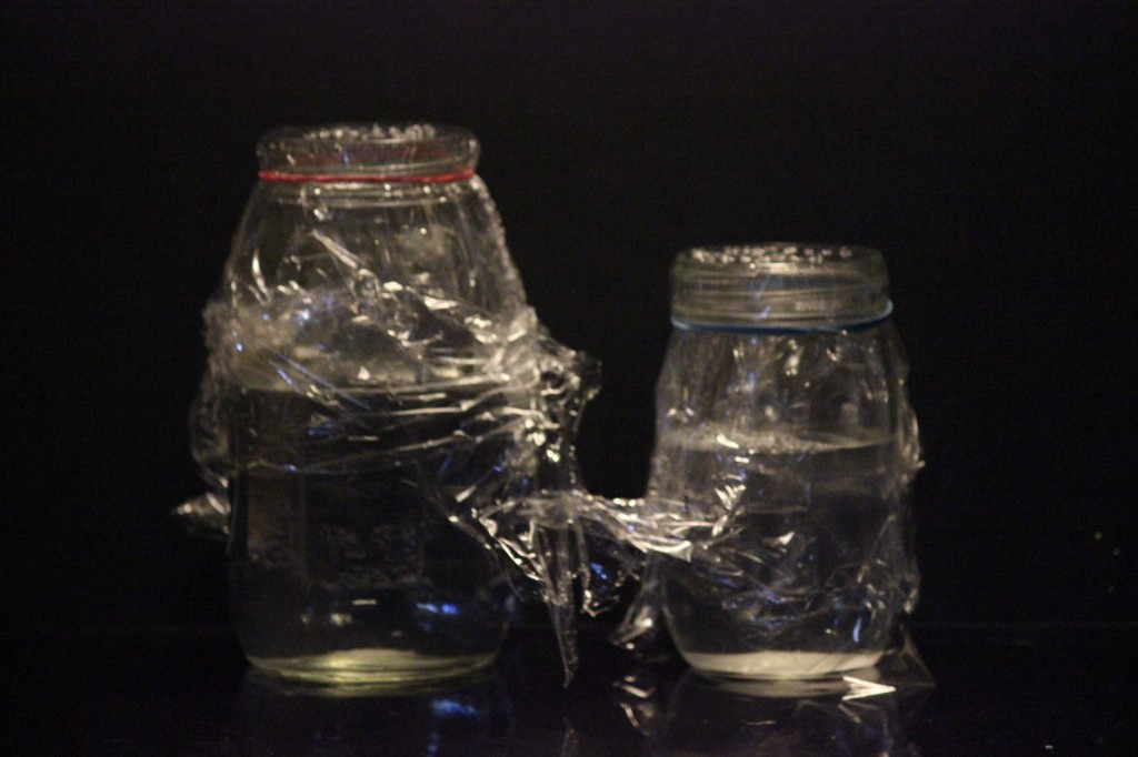 Got gnats in the kitchen? Use this cheap and easy DIY gnat trap to get rid of gnats!