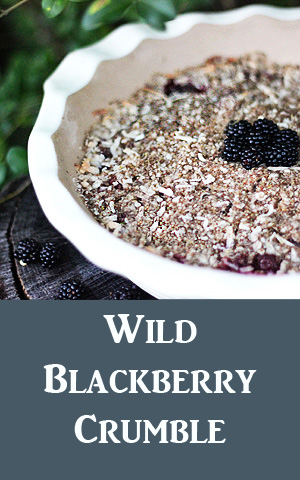 This blackberry crumble isn't low in calories, but when is the last time you got protein, fiber, and iron out of your dessert? You can thank the flax seed for that. Use Xylitol instead of sugar to further reduce calories and make the recipe diabetic-friendly. Substituting rice flour makes the dish gluten-free. It's a treat everyone can enjoy!