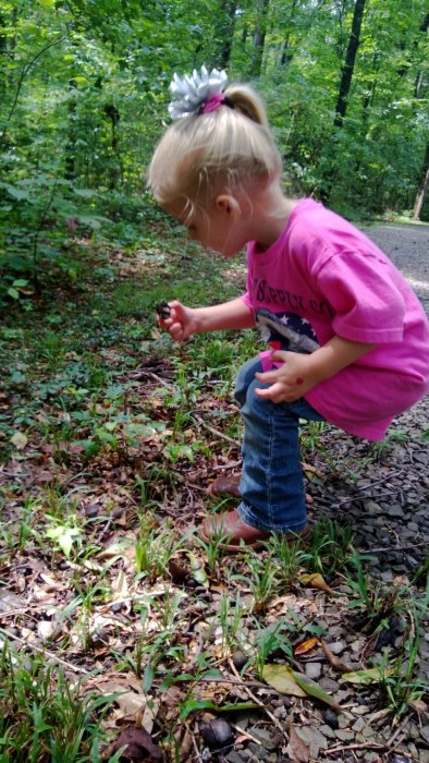 nature trail activity