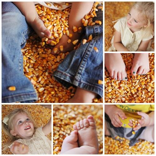 corn crib Collage