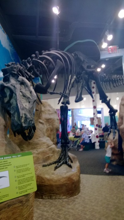 Garden state discovery museum coupons