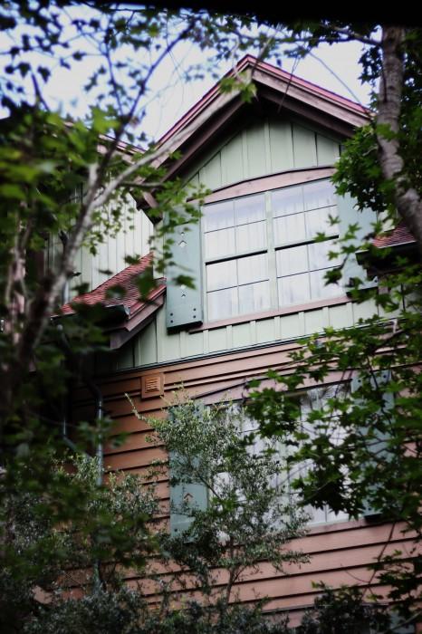 wilderness lodge villas