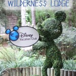 Take a Tour of The Villas At Wilderness Lodge #disneyworld #travel