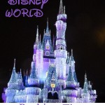 Walt Disney World Packing Tips #travel #TravelSweet