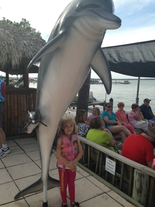 Things to do in Gulf Shores Alabama: Dolphin cruise