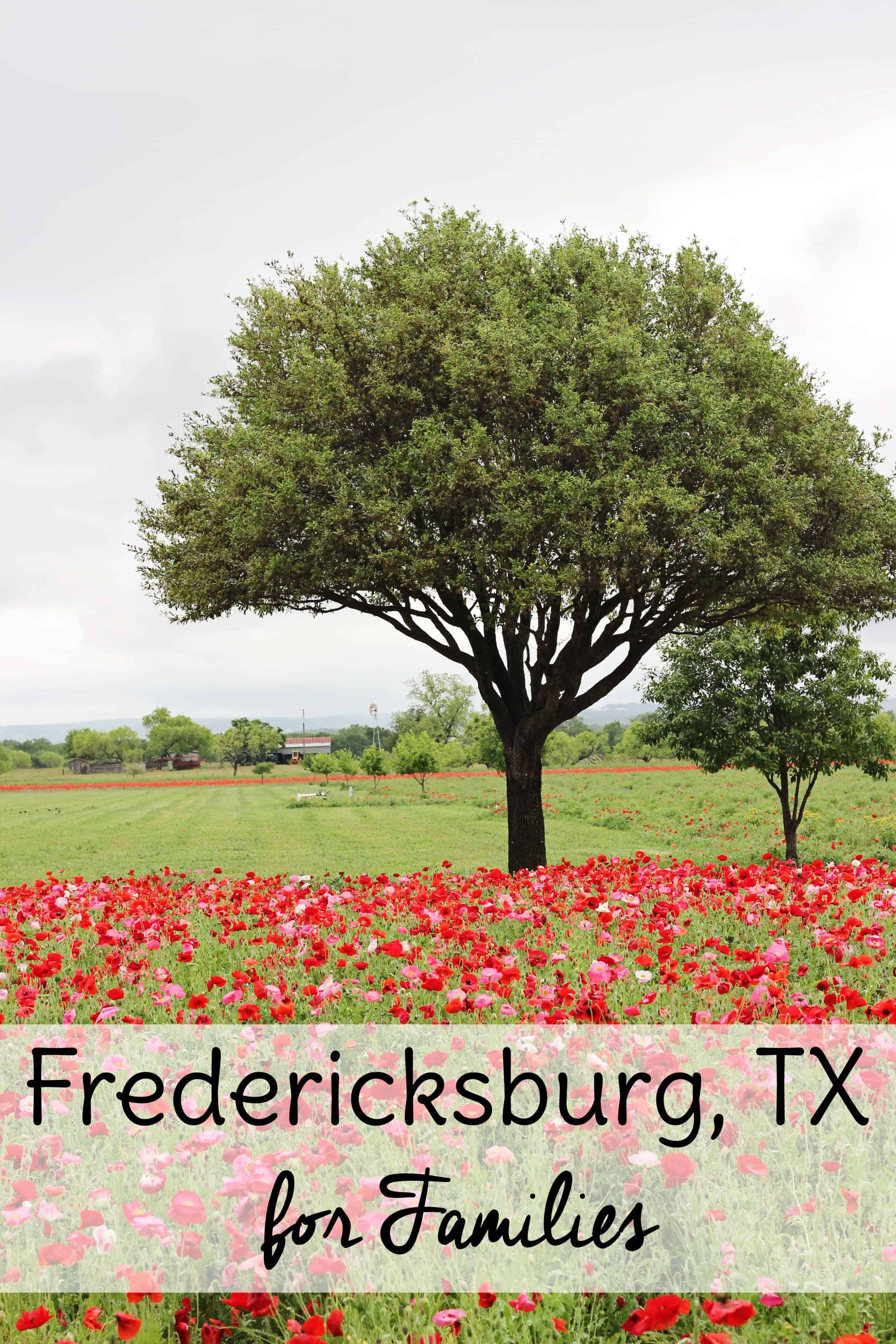 With so many family travel destinations, planning a family vacation can be overwhelming. Consider a visit to Fredericksburg Texas for a laid back family vacation that both kids and adults will enjoy