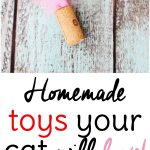 Easy Cat Toys to Make from Wine Corks!