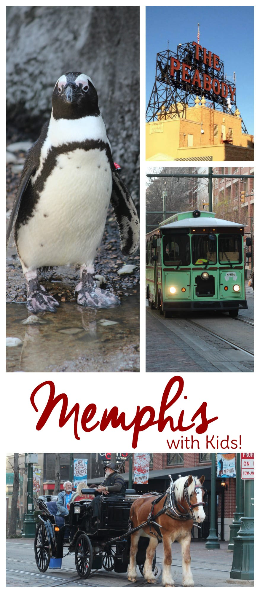 Looking for things to do in Memphis with kids? Check out this list of things to do in Memphis for families. Most are cheap and some are free!