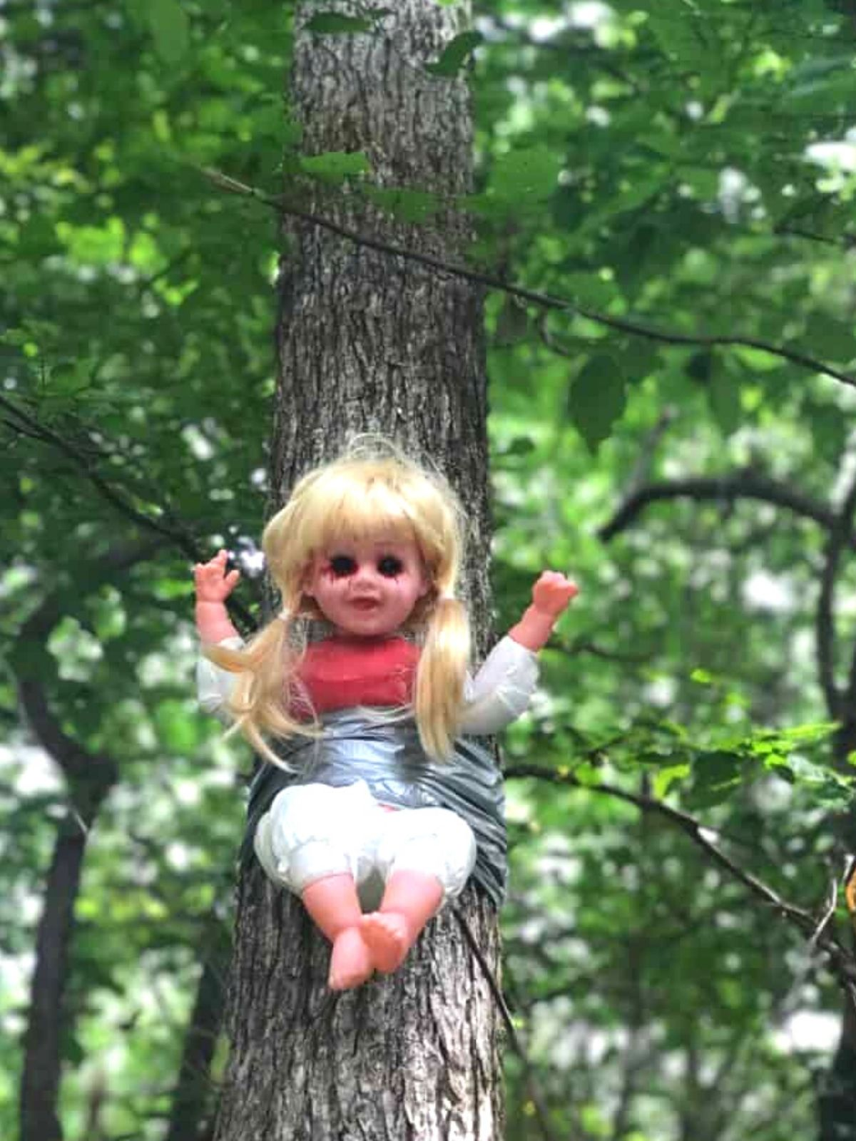 a plastic baby doll with long blonde hair is strapped to a tree near cry baby bridge. It's eyes have been blackened out.