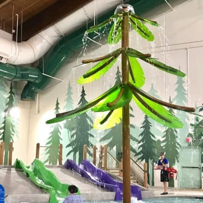 Great Wolf Lodge Tips, Tricks, and Walkthroughs: Atlanta, GA