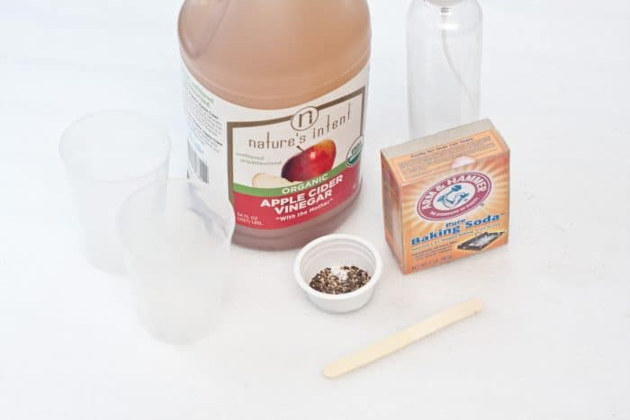 homemade ant killer ingredients and tools