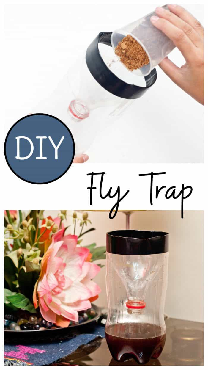 Make a homemade fly trap for indoor use with just a few simple items you probably already have on hand with this fly trap DIY! #lifehacks