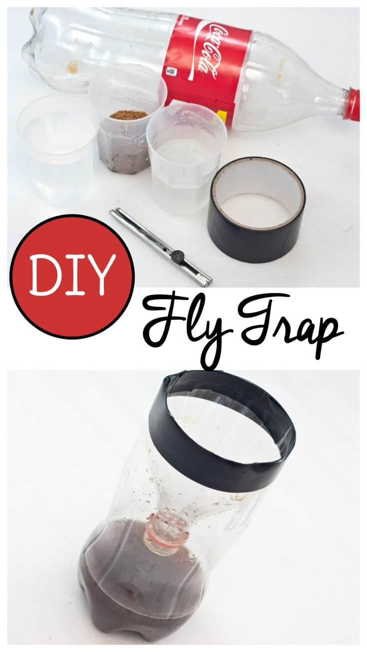 Make a homemade fly trap for next to nothing using materials you already have at home #lifehacks