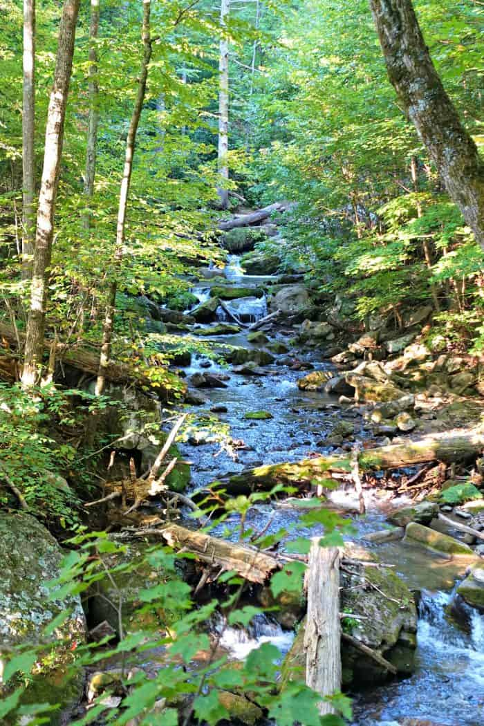 Roaring Run in Virginia's Blue Ridge