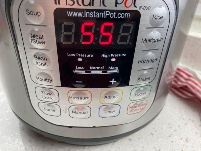 instant pot timer