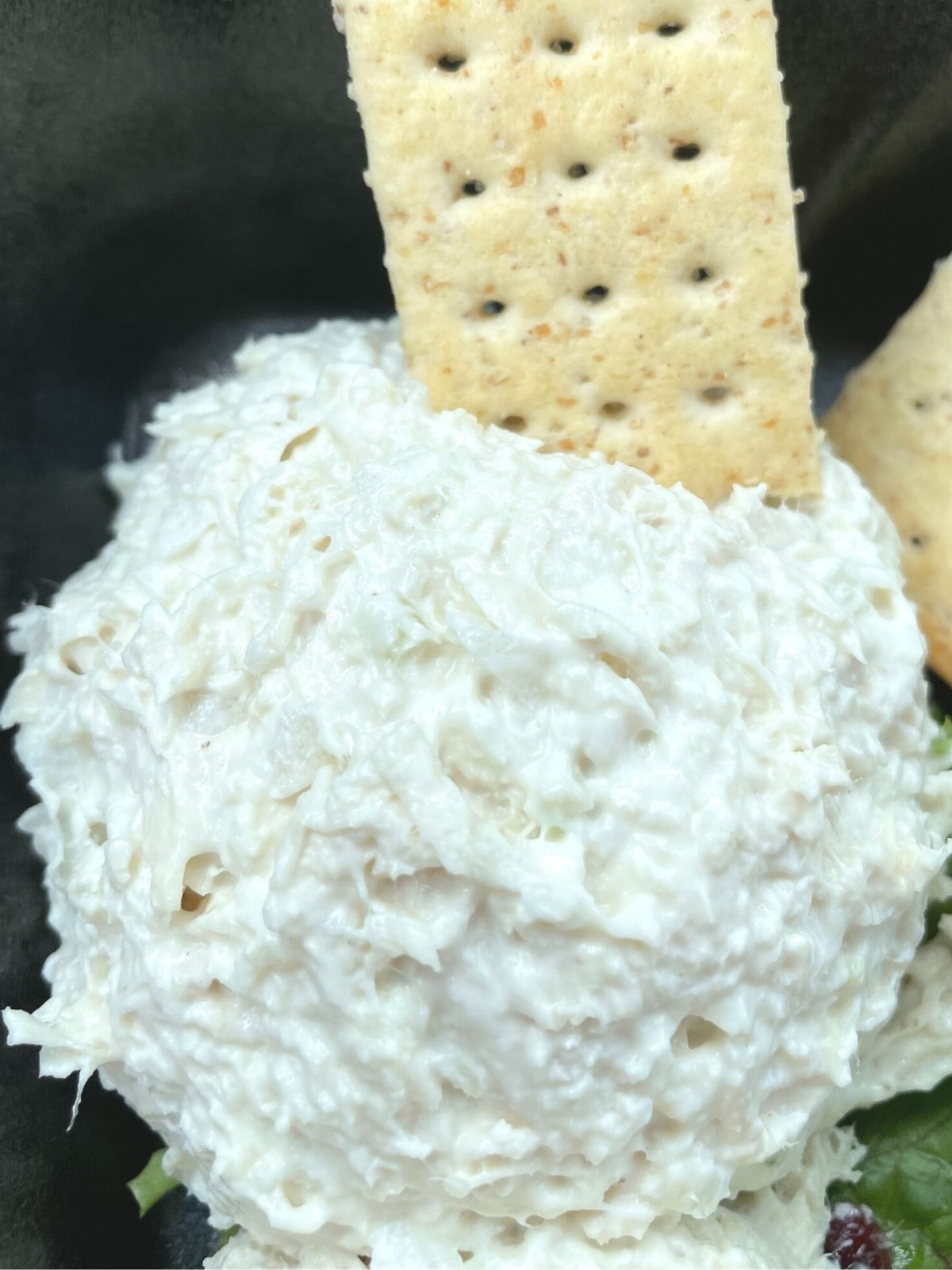 A scoop of Dixie Chick chicken salad chick flavor chicken salad with a whole wheat cracker stuck in it.