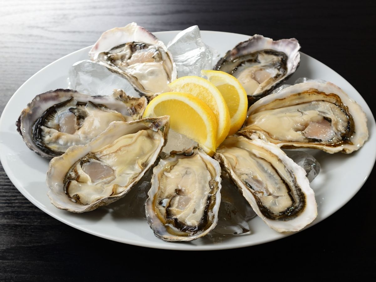 a plate of raw oysters on the half shell with lemon slice garnish.