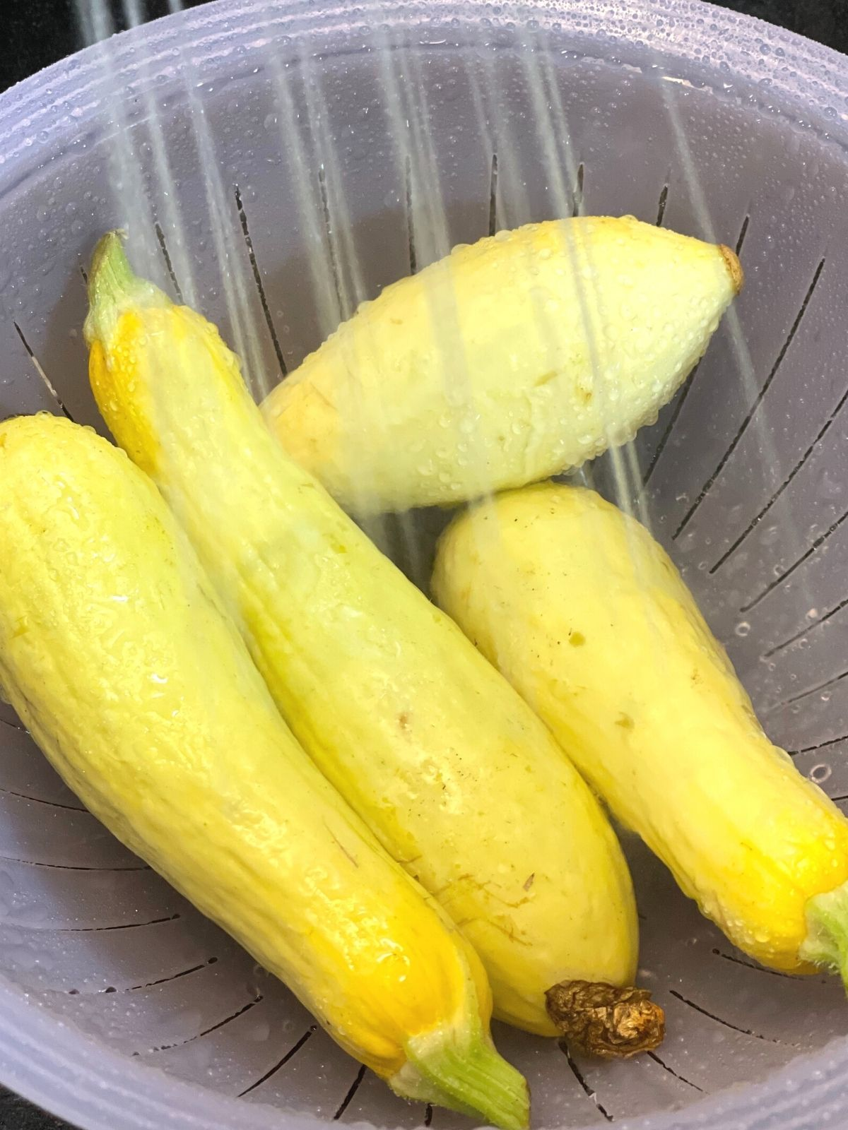 Yellow summer squash in a purple colander being rinsed off in the sink.